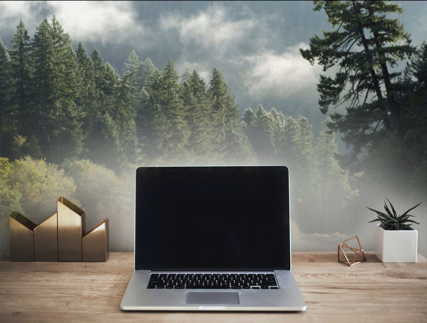 Photo of office desk surrounded by trees